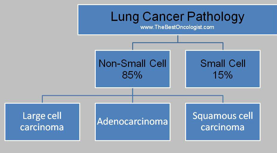 Lung Cancer Pathology