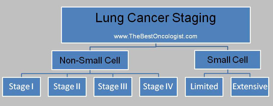 lung cancer staging schema